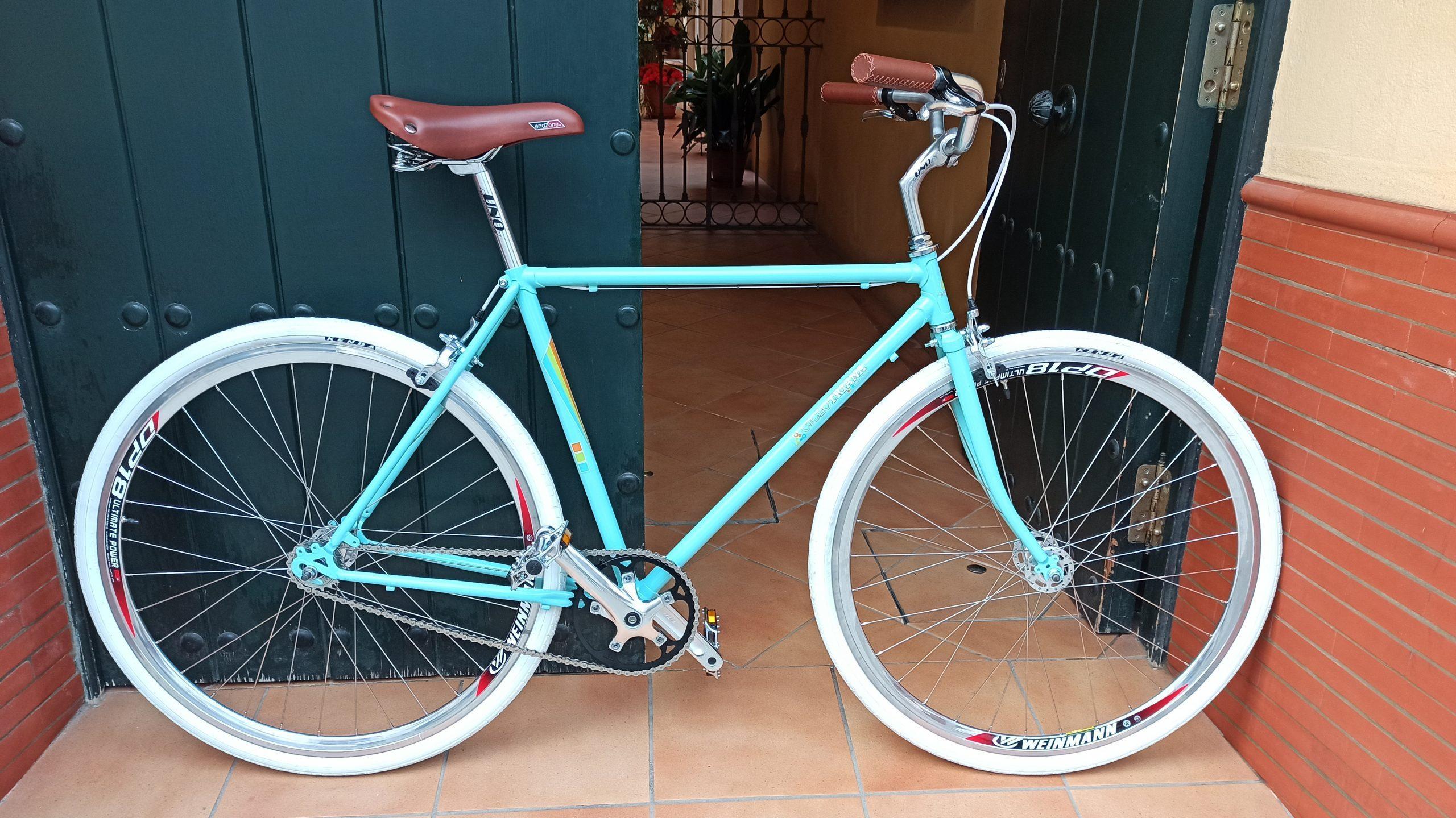 Montaje Single Speed clásica verde y marrón